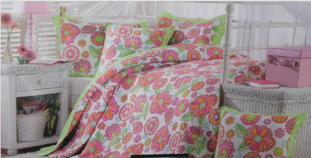 cynthia rowley pink bedding | Aimless walk : cynthia rowley twin quilt - Adamdwight.com
